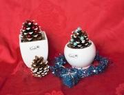 weihnachtsbaum_minikübelhaupt